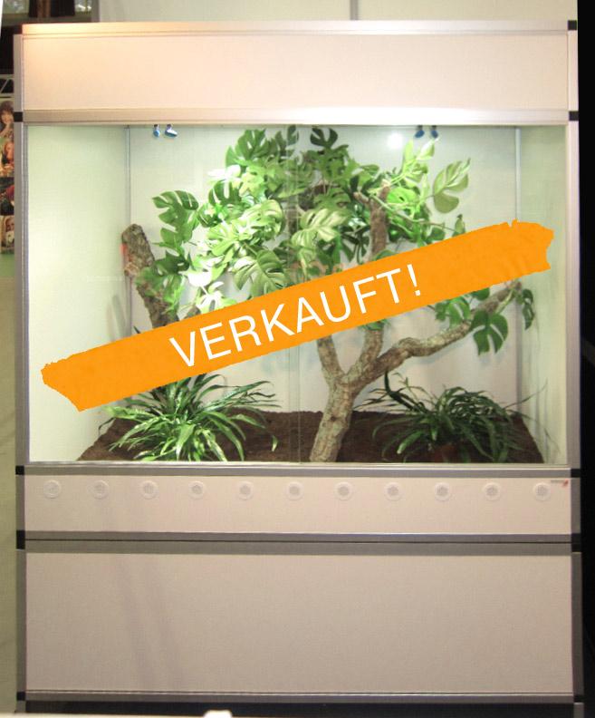 Forex terrarium